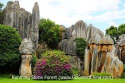 Stone Forest & Colorful Yunnan Day Trip
