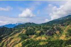Guilin Dragon's Backbone Rice Terraces