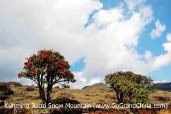 Day Trip to Jiaozi Snow Mountain