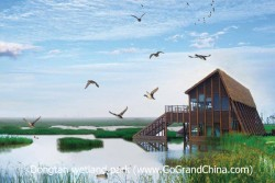 Shanghai Birdwatching Tour