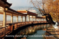 Best Of Kunming Private Day Tour