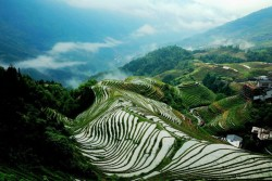 Dragon's Backbone Rice Terraces,