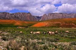 Ganjia Prairie, Xiahe