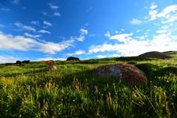 Xiahe Ganjia Grassland